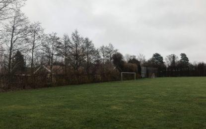 Fældning på boldbane