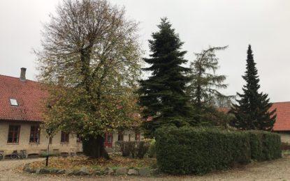 Hjemme hos Have og vildtplejeren