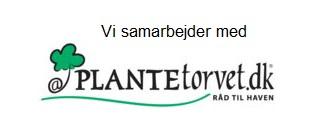 Vi samarbejder med Plantetorvet